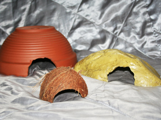 A range of hides that are suitable for use with your Argentine Rainbow Boa