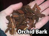 Orchid Bark - a suitable substrate for Argentine Rainbow Boas